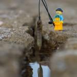 fishboyW__880