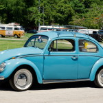 10252_Real-Beetle_resize